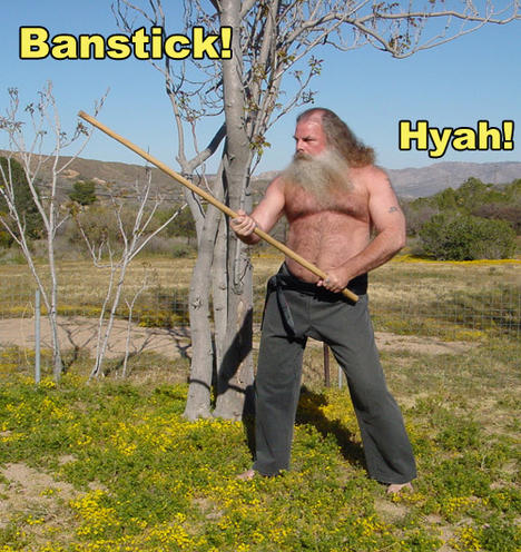 Banstick_Hyah.jpg